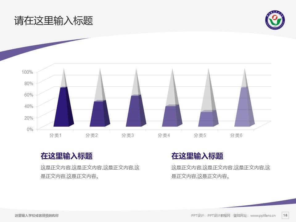 郑州理工职业学院PPT模板下载_幻灯片预览图16