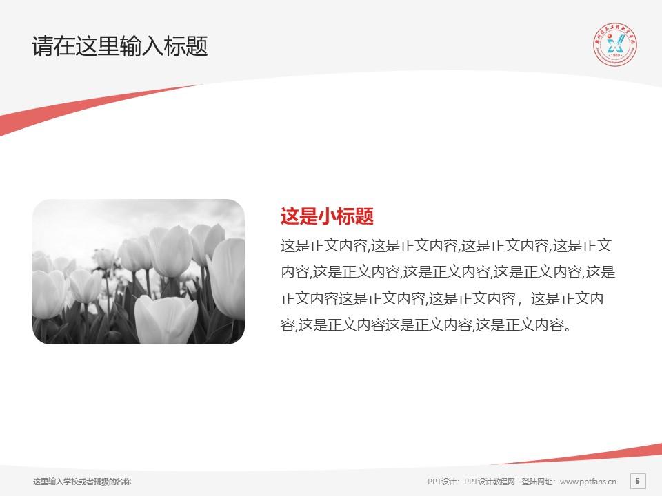 郑州信息工程职业学院PPT模板下载_幻灯片预览图29
