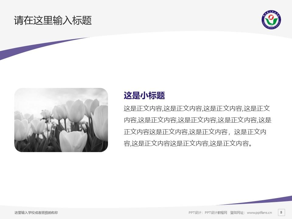 郑州理工职业学院PPT模板下载_幻灯片预览图5