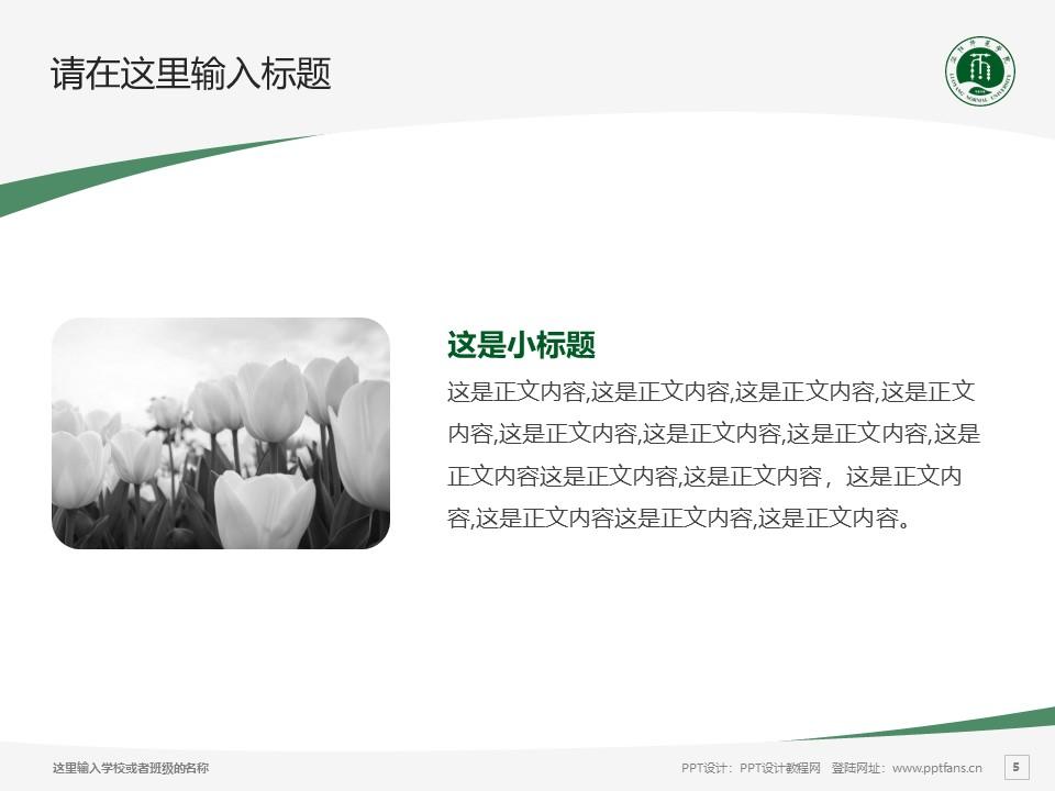 洛阳师范学院PPT模板下载_幻灯片预览图5
