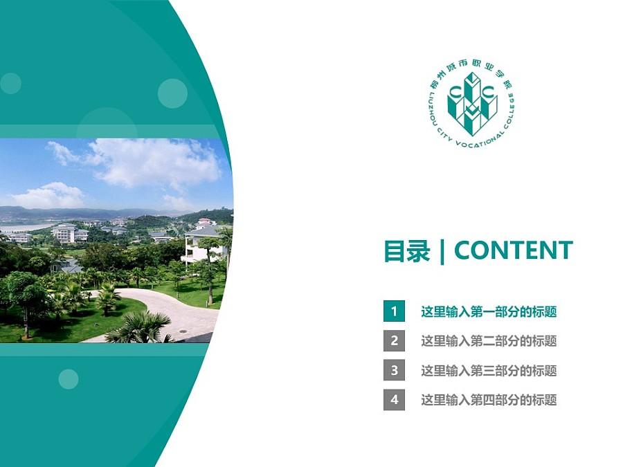 柳州城市职业学院PPT模板下载_幻灯片预览图3