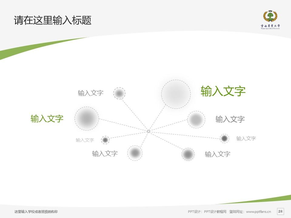 云南农业大学热带作物学院PPT模板下载_幻灯片预览图28