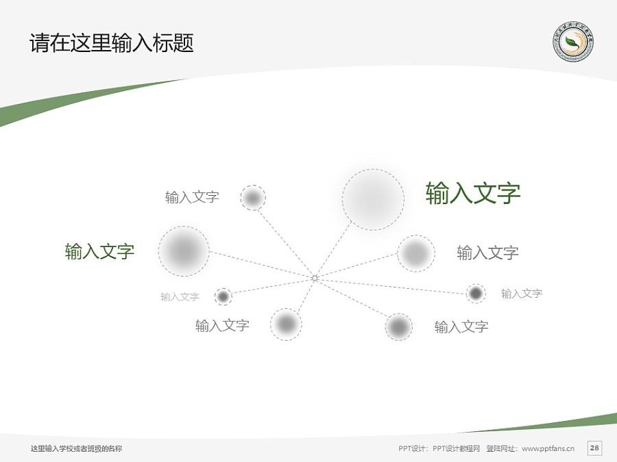 大理农林职业技术学院PPT模板下载_幻灯片预览图28