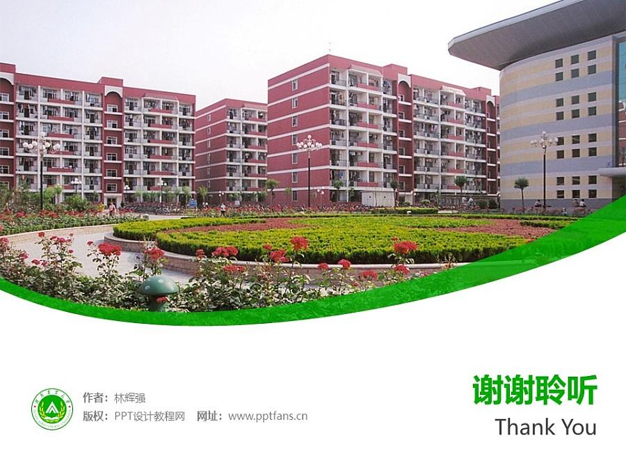 河南农业大学PPT模板下载_幻灯片预览图32