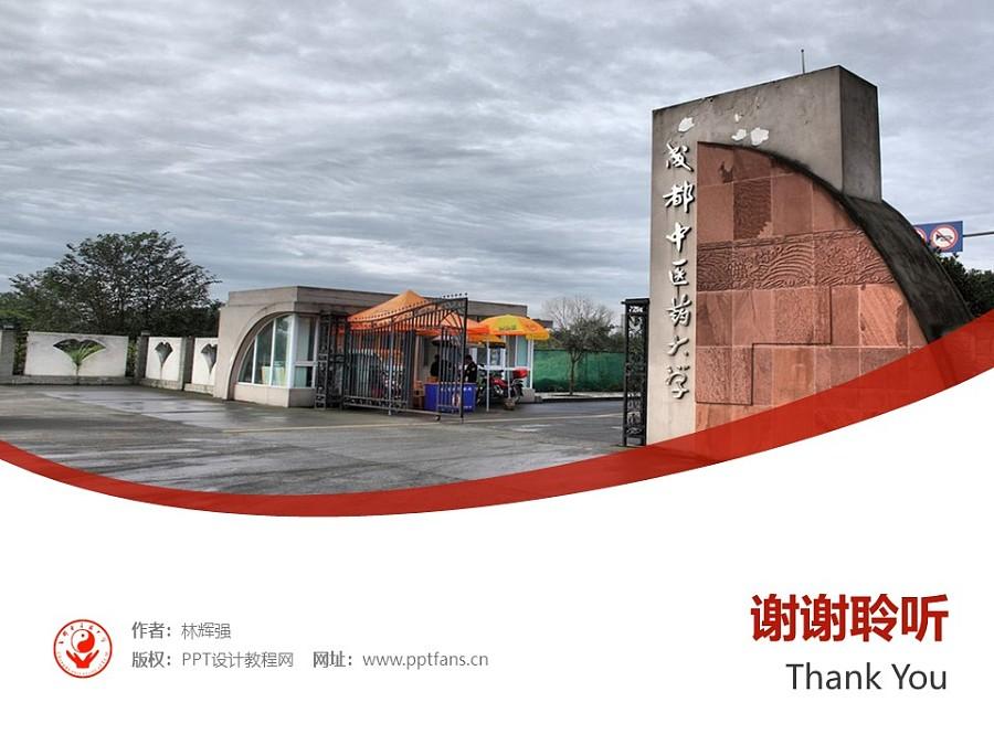 成都中医药大学PPT模板下载_幻灯片预览图32