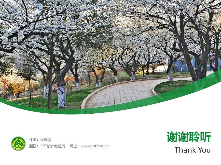 云南农业职业技术学院PPT模板下载_幻灯片预览图32