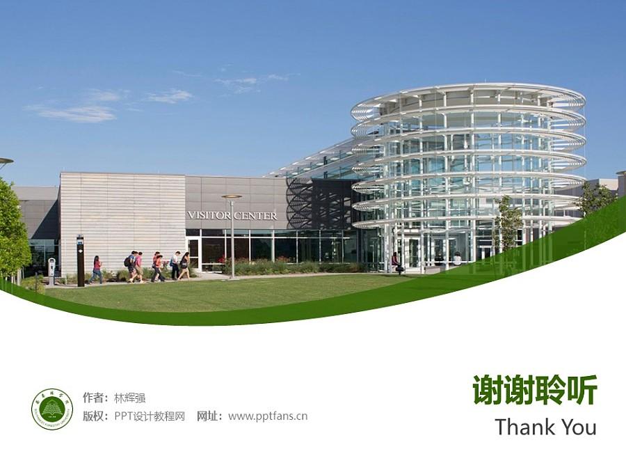 西南林业大学PPT模板下载_幻灯片预览图31