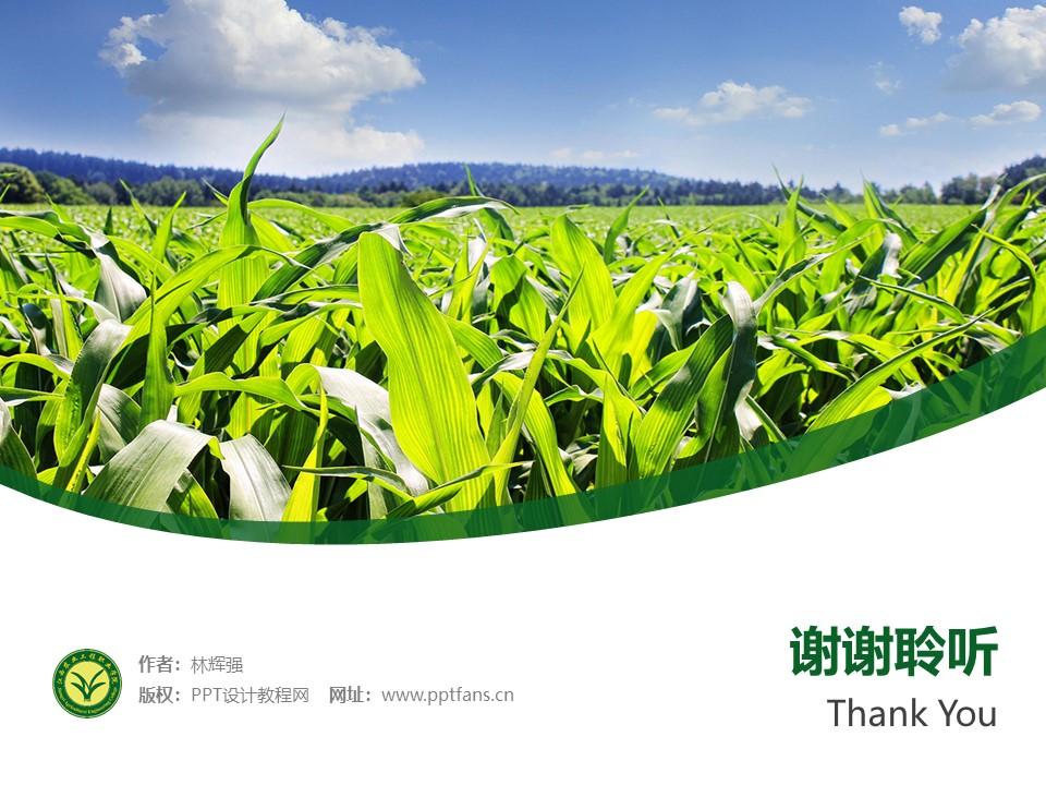 江西农业工程职业学院PPT模板下载_幻灯片预览图32