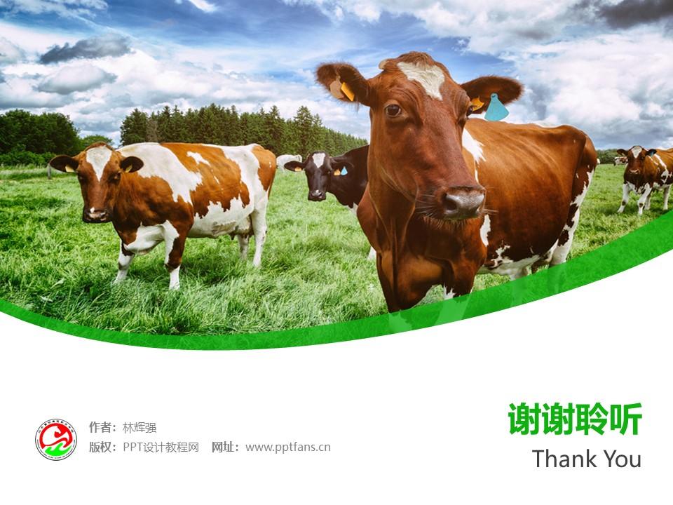 山东畜牧兽医职业学院PPT模板下载_幻灯片预览图32
