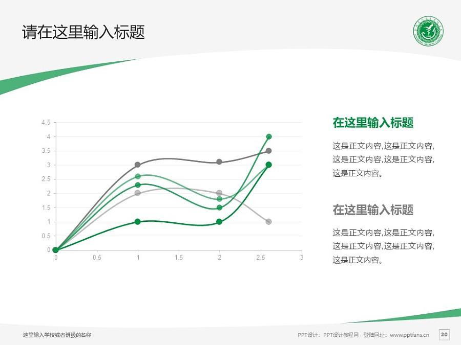 楚雄医药高等专科学校PPT模板下载_幻灯片预览图20