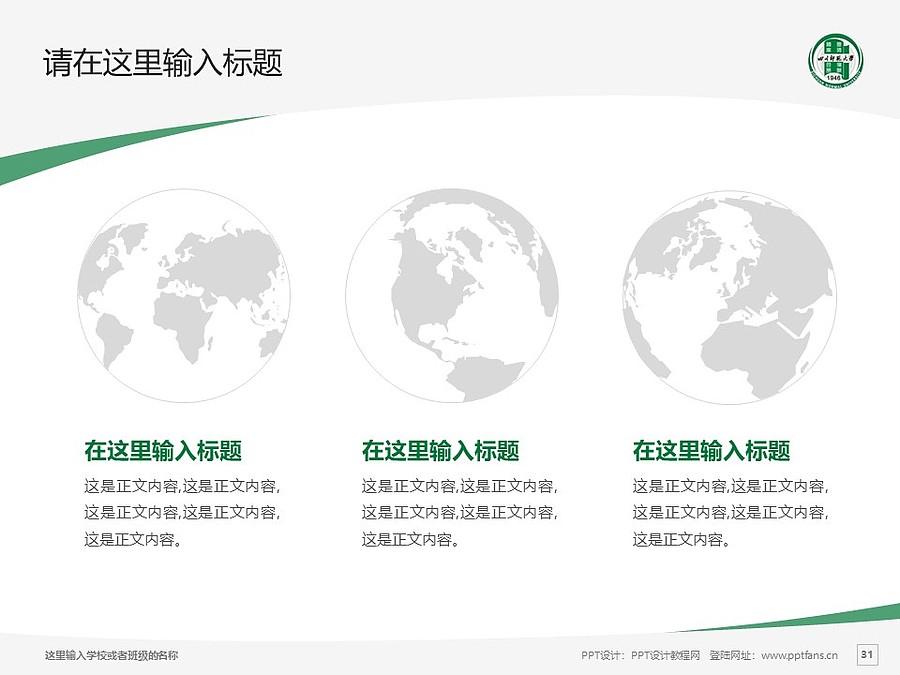 四川师范大学PPT模板_幻灯片预览图31