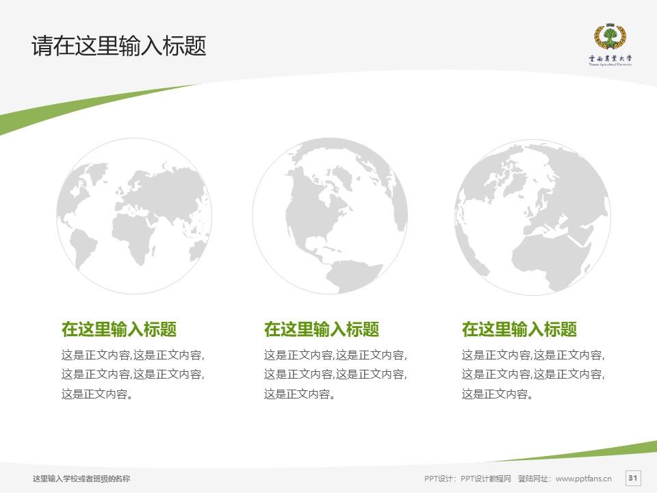 云南农业大学热带作物学院PPT模板下载_幻灯片预览图31