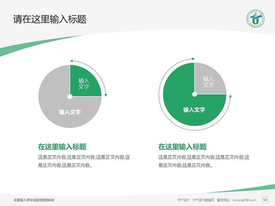 海南师范大学PPT模板下载_幻灯片预览图12