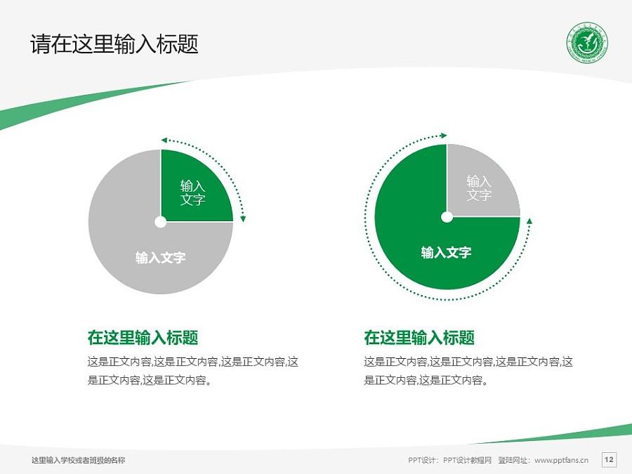 楚雄医药高等专科学校PPT模板下载_幻灯片预览图12