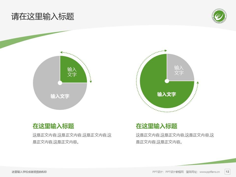 湖南现代物流职业技术学院PPT模板下载_幻灯片预览图12
