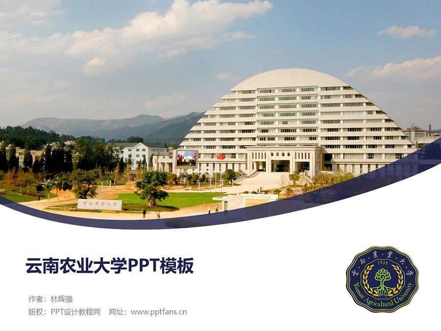 云南农业大学PPT模板下载_幻灯片预览图1