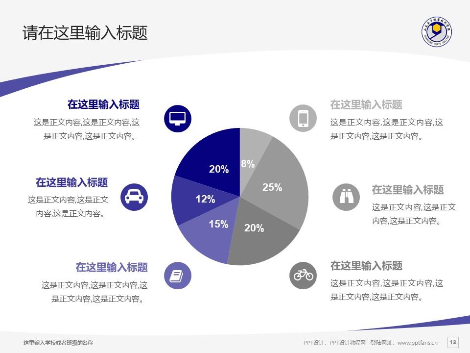 山东华宇职业技术学院PPT模板下载_幻灯片预览图13