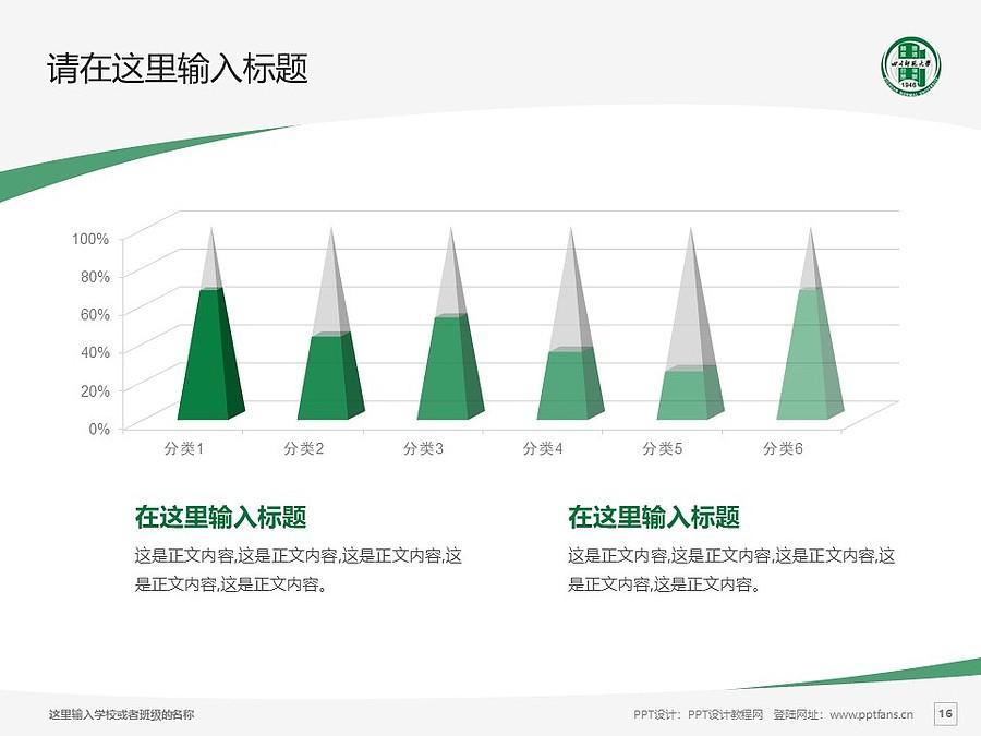 四川师范大学PPT模板_幻灯片预览图16