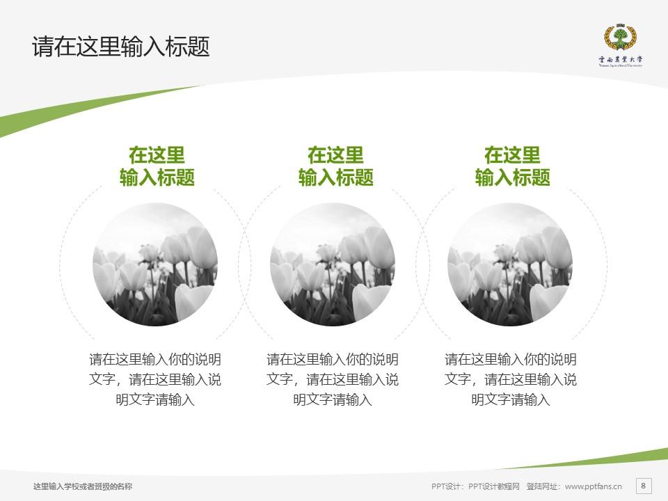 云南农业大学热带作物学院PPT模板下载_幻灯片预览图8