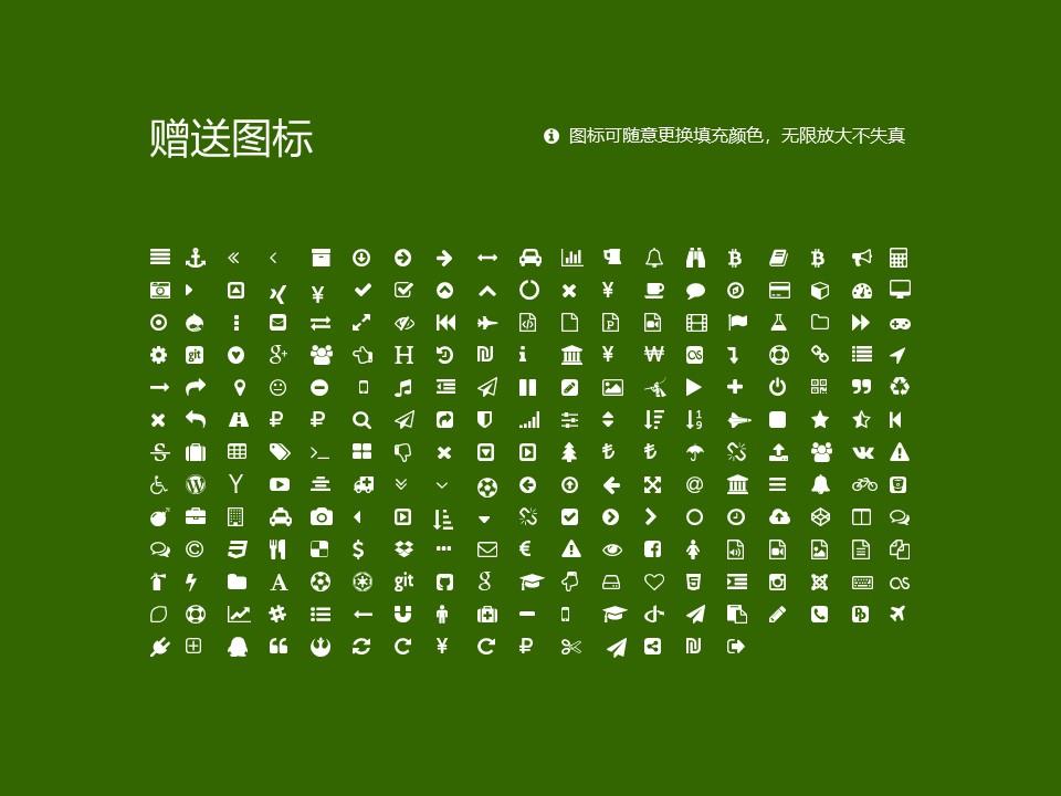 西南林业大学PPT模板下载_幻灯片预览图33