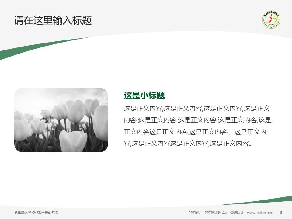 湖南外国语职业学院PPT模板下载_幻灯片预览图5