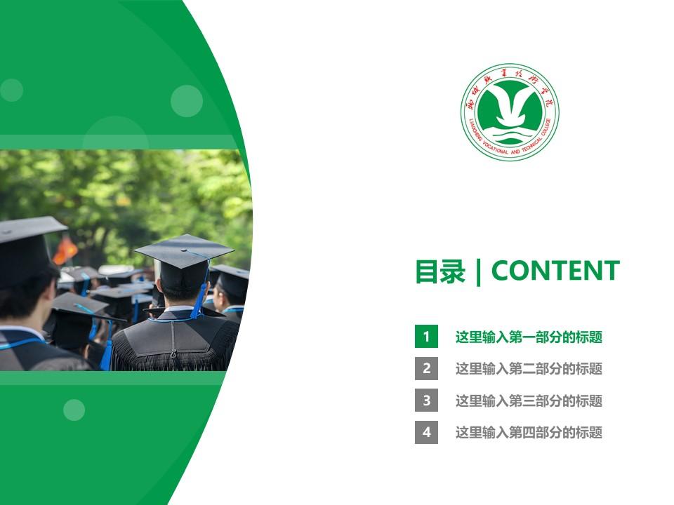 聊城职业技术学院PPT模板下载_幻灯片预览图3