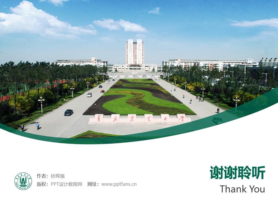 青岛农业大学PPT模板下载_幻灯片预览图32