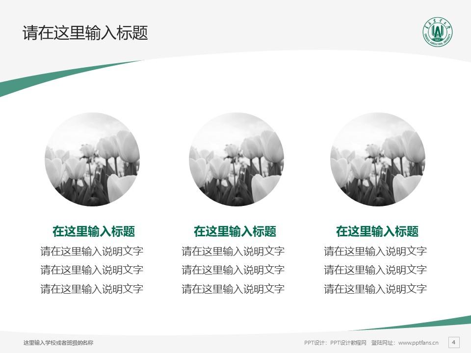 青岛农业大学PPT模板下载_幻灯片预览图4