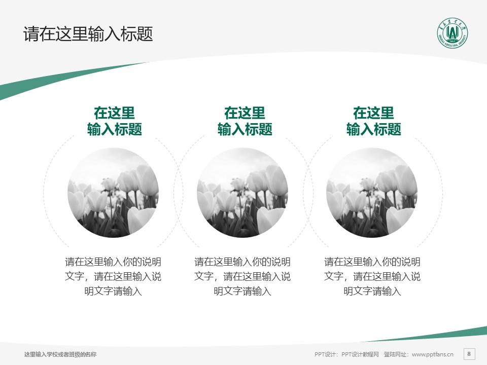 青岛农业大学PPT模板下载_幻灯片预览图8