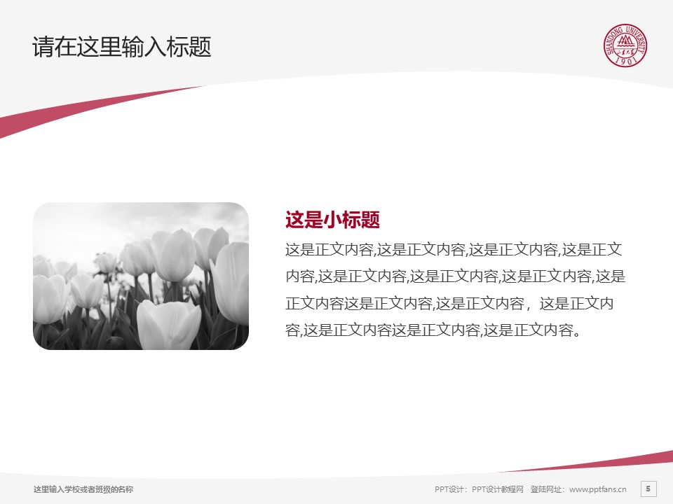 山东大学PPT模板下载_幻灯片预览图5