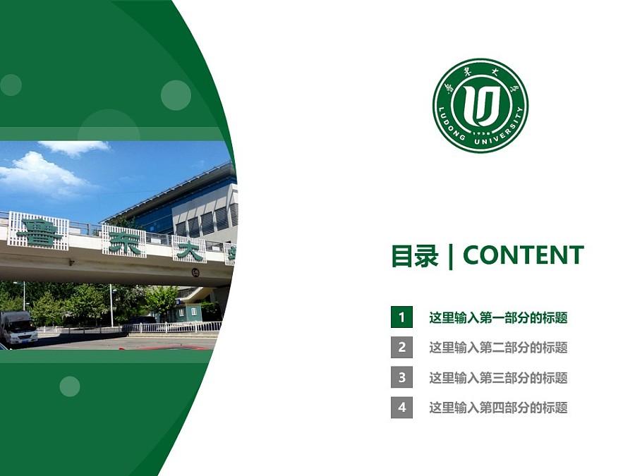 鲁东大学PPT模板下载_幻灯片预览图3