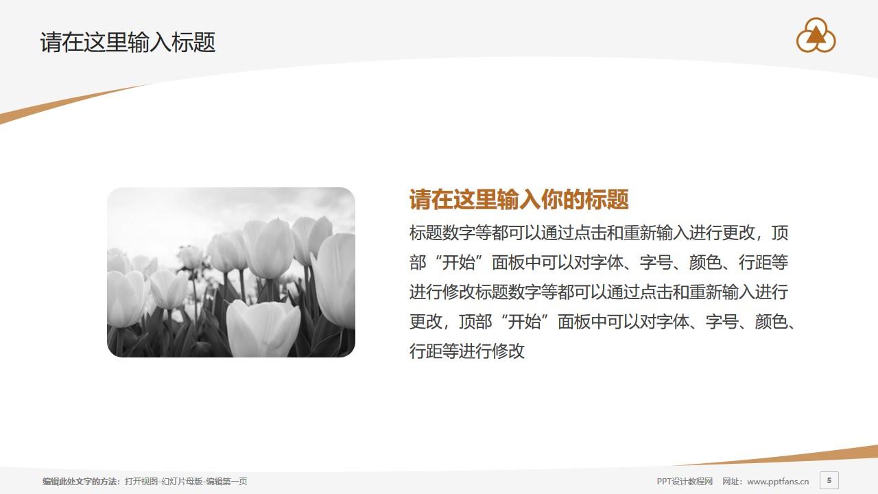 上海中华职业技术学院PPT模板下载_幻灯片预览图5