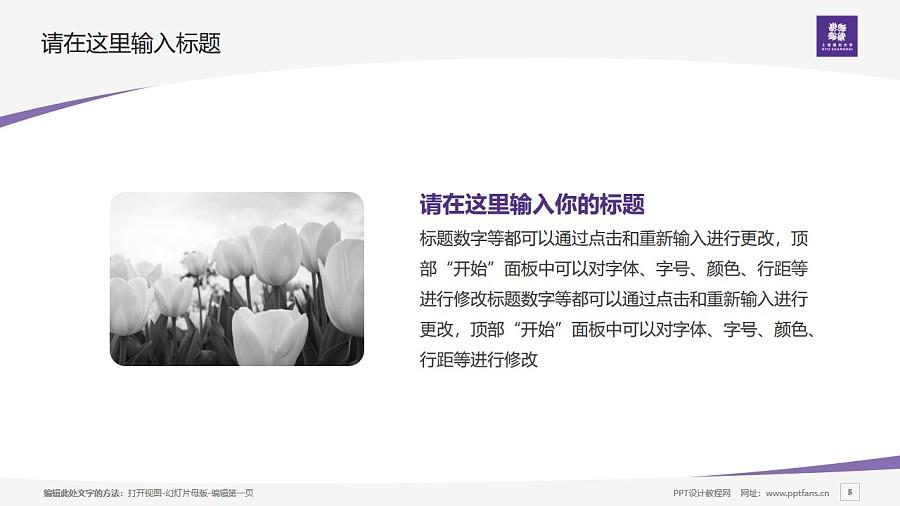 上海纽约大学PPT模板下载_幻灯片预览图5
