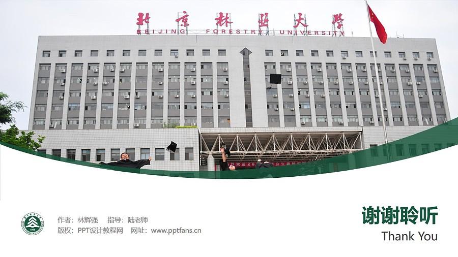 北京林业大学PPT模板下载_幻灯片预览图32
