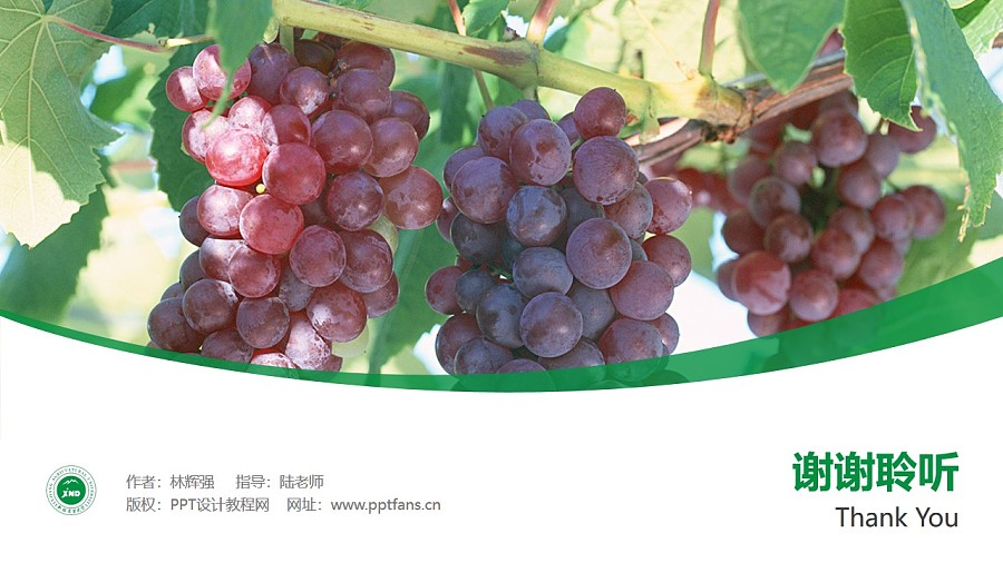 新疆农业大学PPT模板下载_幻灯片预览图32
