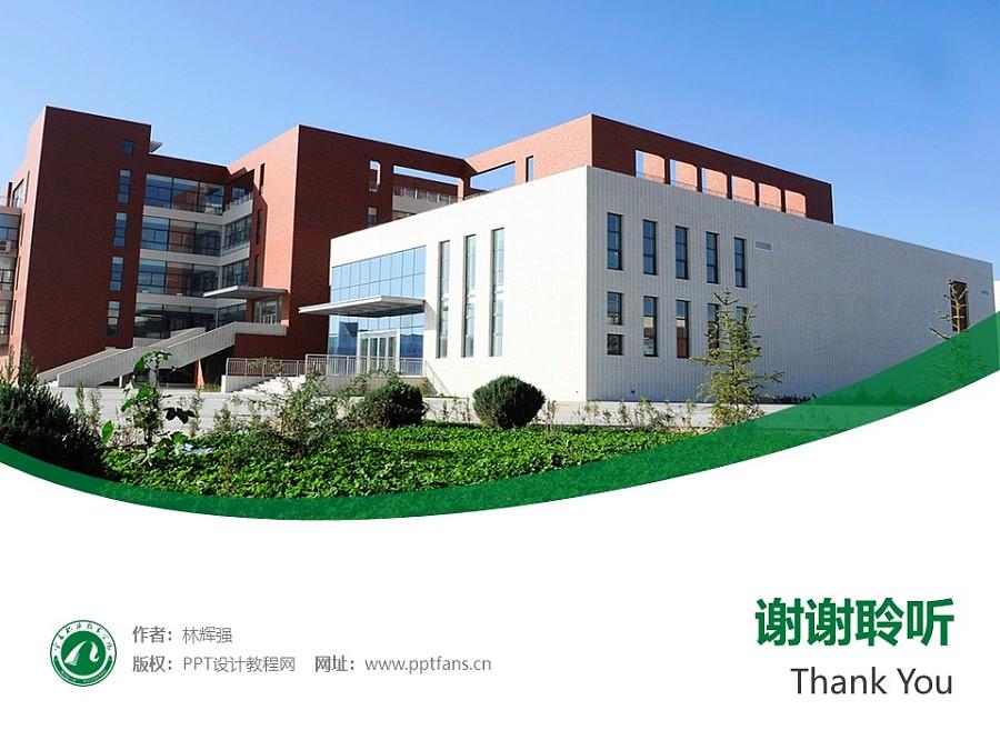 宁夏职业技术学院PPT模板下载_幻灯片预览图32