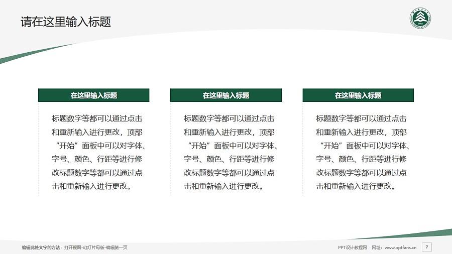 北京林业大学PPT模板下载_幻灯片预览图7