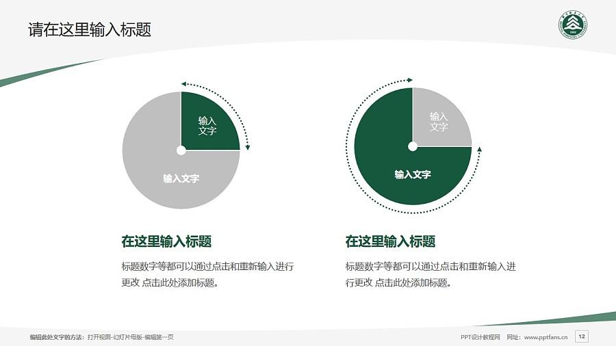 北京林业大学PPT模板下载_幻灯片预览图12