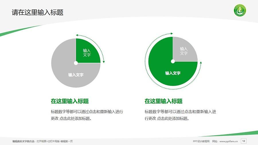 宁夏财经职业技术学院PPT模板下载_幻灯片预览图12