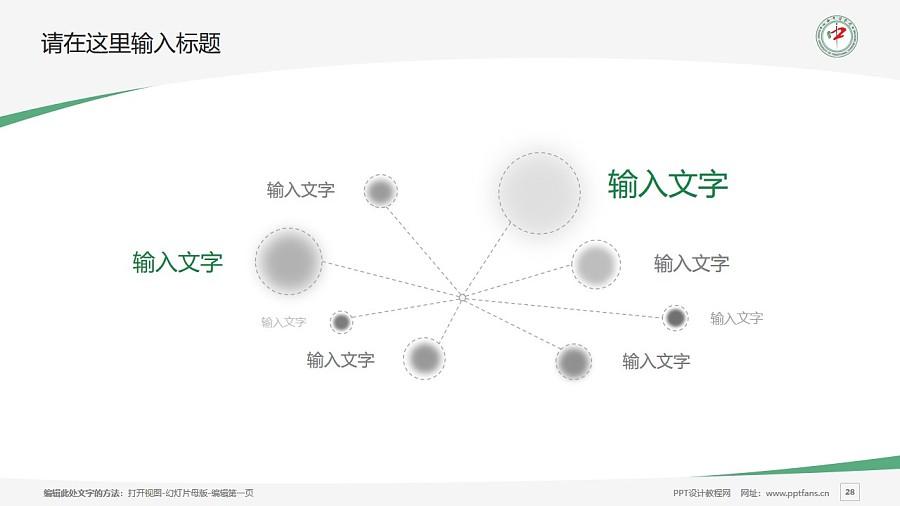 山西中医学院PPT模板下载_幻灯片预览图28