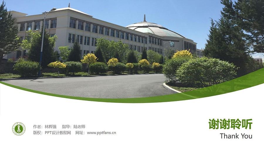 内蒙古师范大学PPT模板下载_幻灯片预览图32