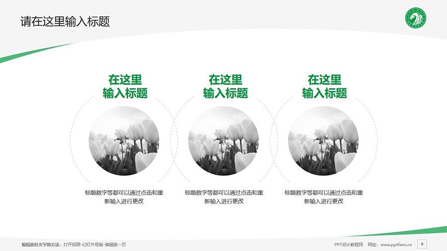 内蒙古美术职业学院PPT模板下载_幻灯片预览图8