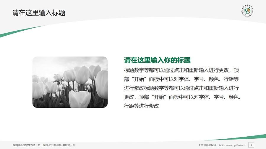 天津中医药大学PPT模板下载_幻灯片预览图5