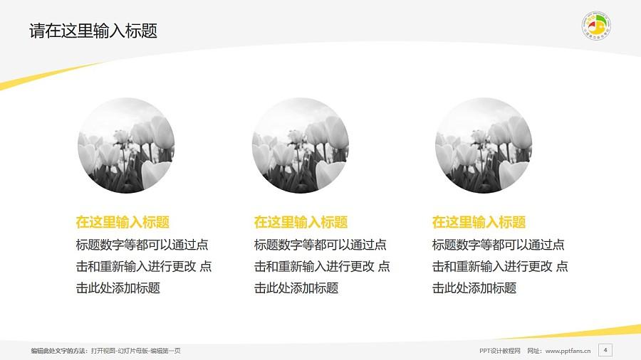 广西艺术学院PPT模板下载_幻灯片预览图4