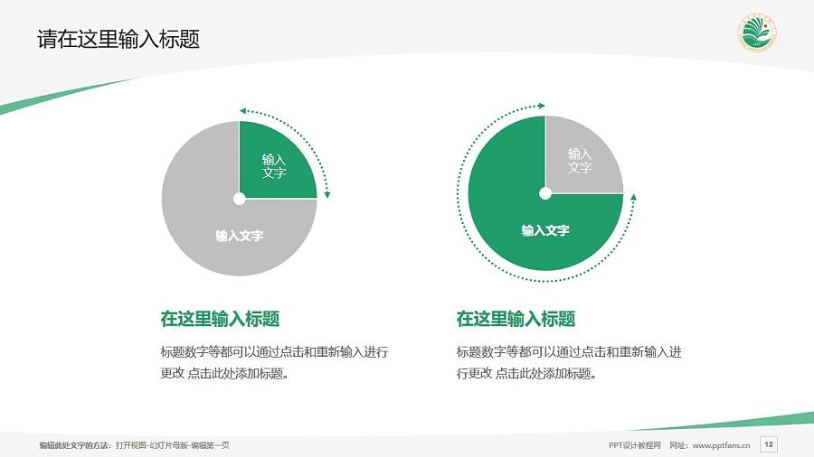 大庆师范学院PPT模板下载_幻灯片预览图12