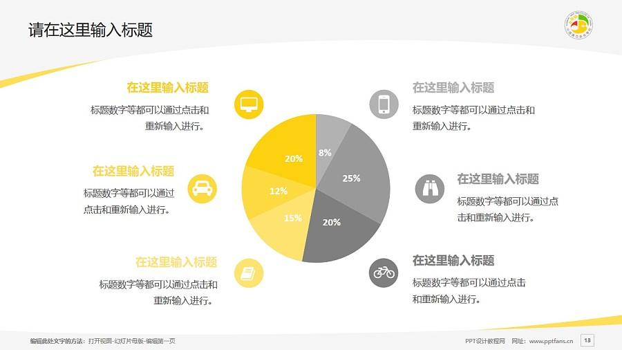 广西艺术学院PPT模板下载_幻灯片预览图13