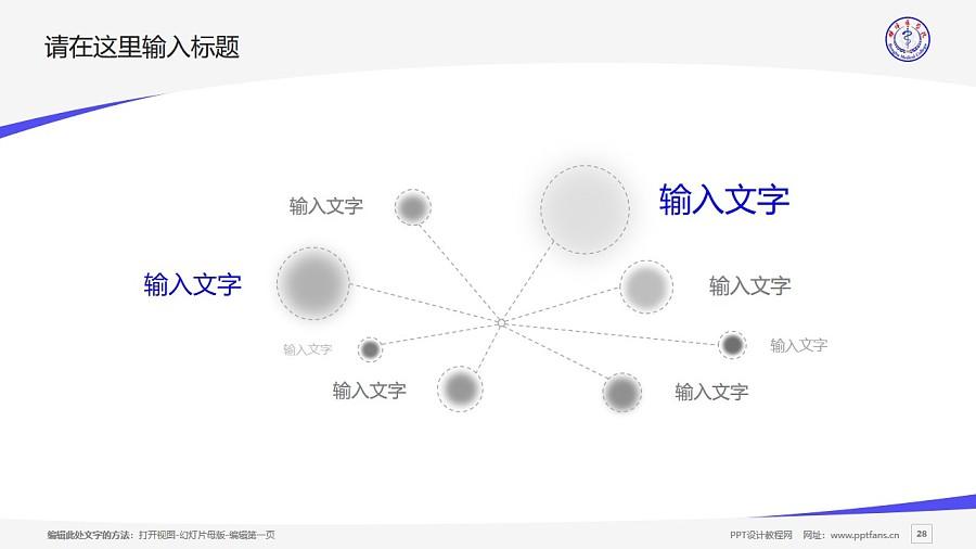蚌埠医学院PPT模板下载_幻灯片预览图28