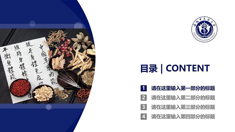 安徽中医药大学PPT模板下载_幻灯片预览图3