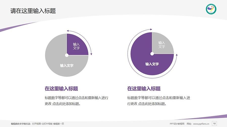 宜春学院PPT模板下载_幻灯片预览图12