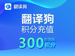 翻译狗积分购买300积分优惠促销Word、excel、Pdf文献论文文档翻译神器